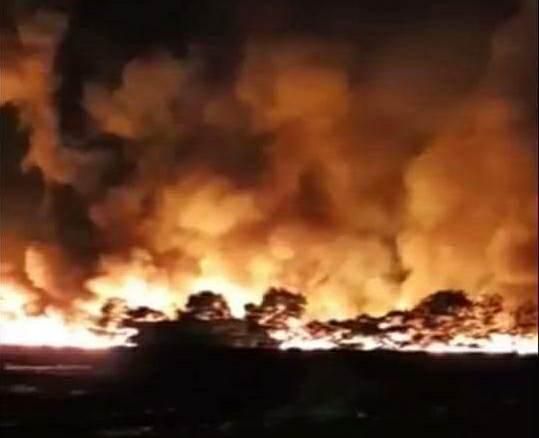 Tin nhanh - Hải Dương: Cháy lớn tại khu xử lý rác trong đêm 8/3