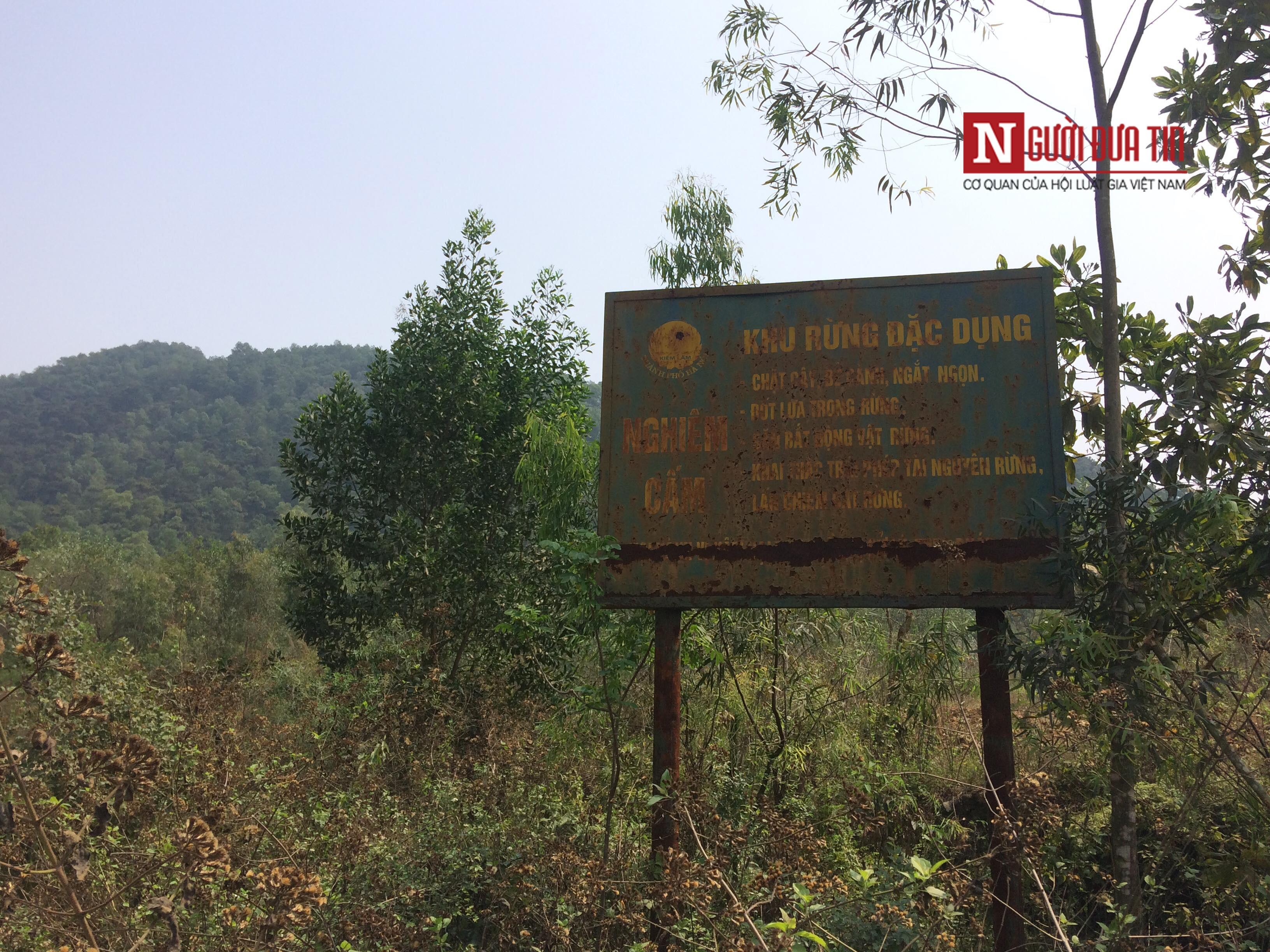Môi trường - Hà Nội: Hàng nghìn mét khối rác nghi 'đội lốt' mùn hữu cơ đổ vào rừng đặc dụng (Hình 2).