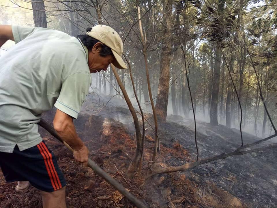 Chính trị - Xã hội - Cháy rừng cạnh chùa ngàn năm tuổi, quân dân hợp sức dập lửa (Hình 7).