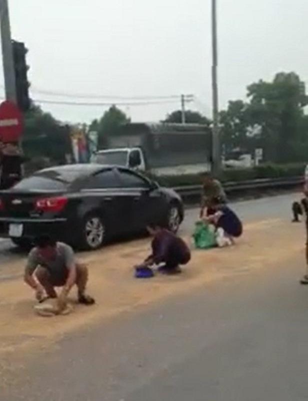 Xã hội - Không có chuyện xe container vương vãi thóc bị hôi của