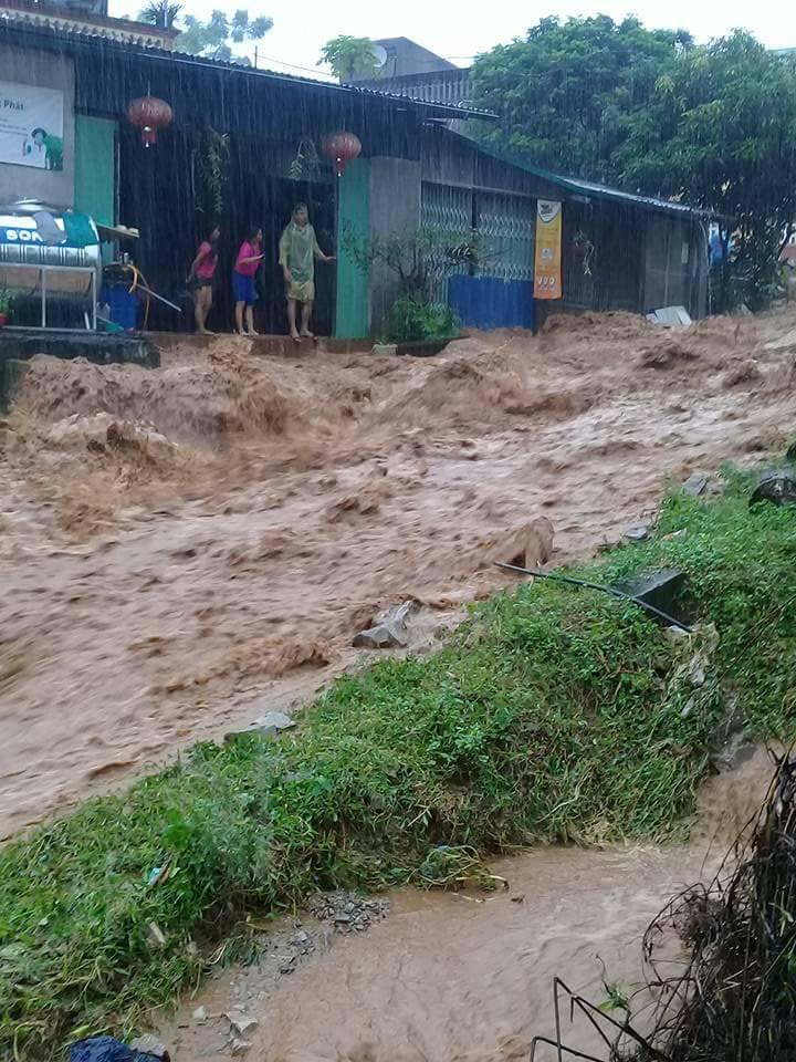 Chính trị - Xã hội - Huyện Đà Bắc, Hòa Bình thiệt hại lớn sau mưa lũ (Hình 5).