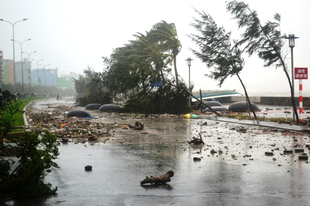 Tin tức - Chính trị - Thủ tướng biểu dương hành động dũng cảm cứu người trong bão dữ