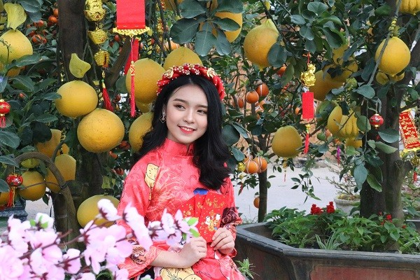 Những thiếu nữ xứ Nghệ khoe sắc giữa vườn hoa Tết  - Hình 5