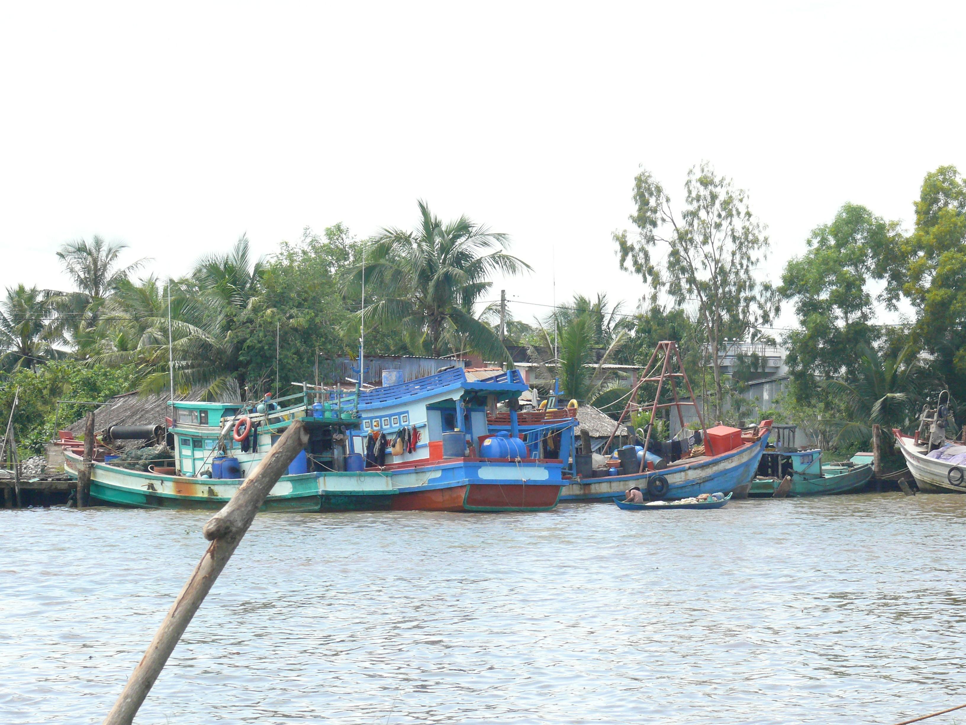 Tin nhanh - Cà Mau: 2 huyện Đầm Dơi và Cái Nước làm tốt công tác ứng phó với bão Tembin