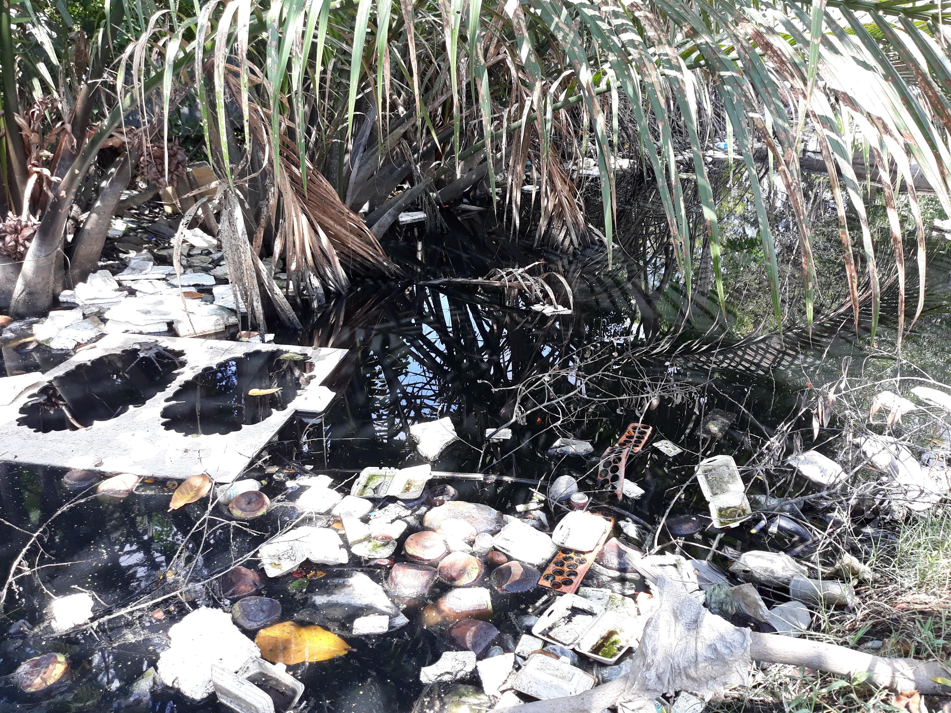 Môi trường - Dân than trời với con kênh ô nhiễm nặng giữa lòng TP.Cà Mau (Hình 2).