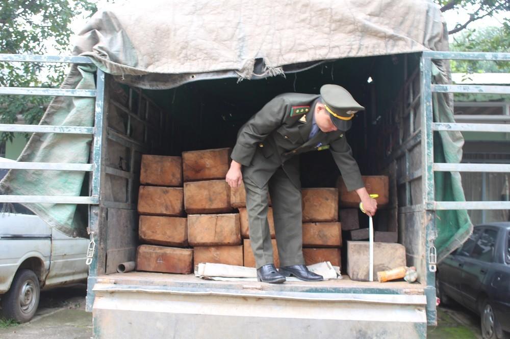 An ninh - Hình sự - Chở gỗ lậu, tài xế tung cửa bỏ chạy khi thấy kiểm lâm