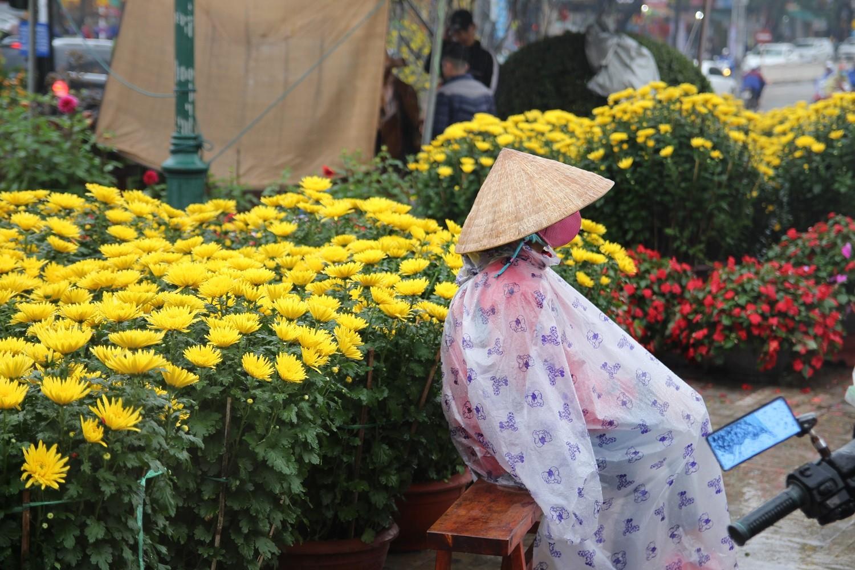 Người bán hoa Tết co rúm trong cơn giá lạnh cuối năm - Hình 2