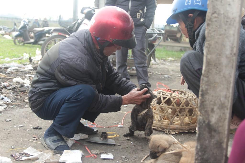 Xã hội - Độc đáo phiên chợ chó truyền thống ở miền quê xứ Nghệ (Hình 3).
