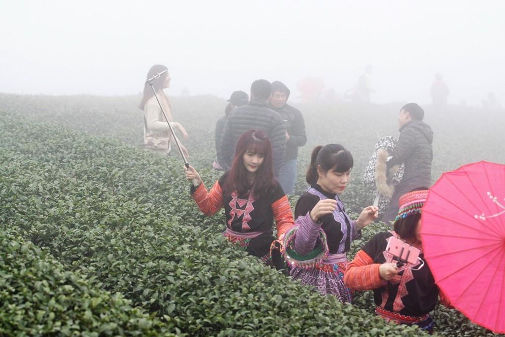 Những đứa trẻ làm người mẫu giữa khu du lịch đồi chè trái tim - Hình 2