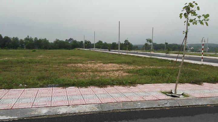 Xã hội - Có hay không việc cán bộ đầu cơ đất dự án sân bay Long Thành?