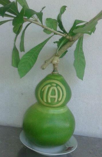 Trái cây chưng Tết bạc triệu đặc biệt hút khách 6