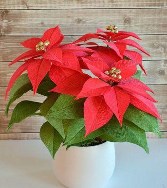 Xã hội - 7 loại hoa mang lại may mắn cho gia đình trong năm mới 2018 (Hình 5).
