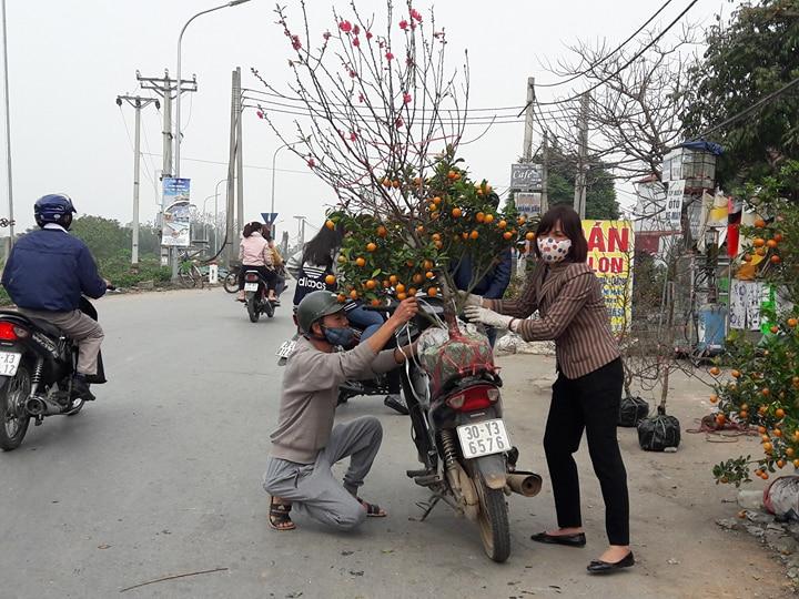 Xã hội - Hà Nội: Quất, đào chiều 30 Tết giá rẻ như cho, trả bằng nào cũng bán (Hình 2).