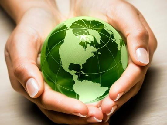 Kết nối- Chính sách - Rà soát, hoàn thiện chính sách, pháp luật về bảo vệ môi trường