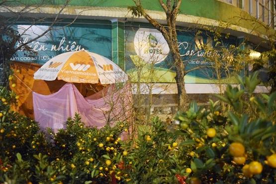 Cảnh màn trời chiếu đất trong giá lạnh của người bán hoa Tết ở Đà Nẵng - Hình 10