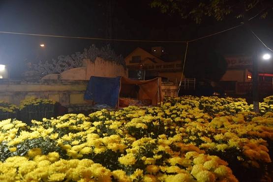 Cảnh màn trời chiếu đất trong giá lạnh của người bán hoa Tết ở Đà Nẵng - Hình 15