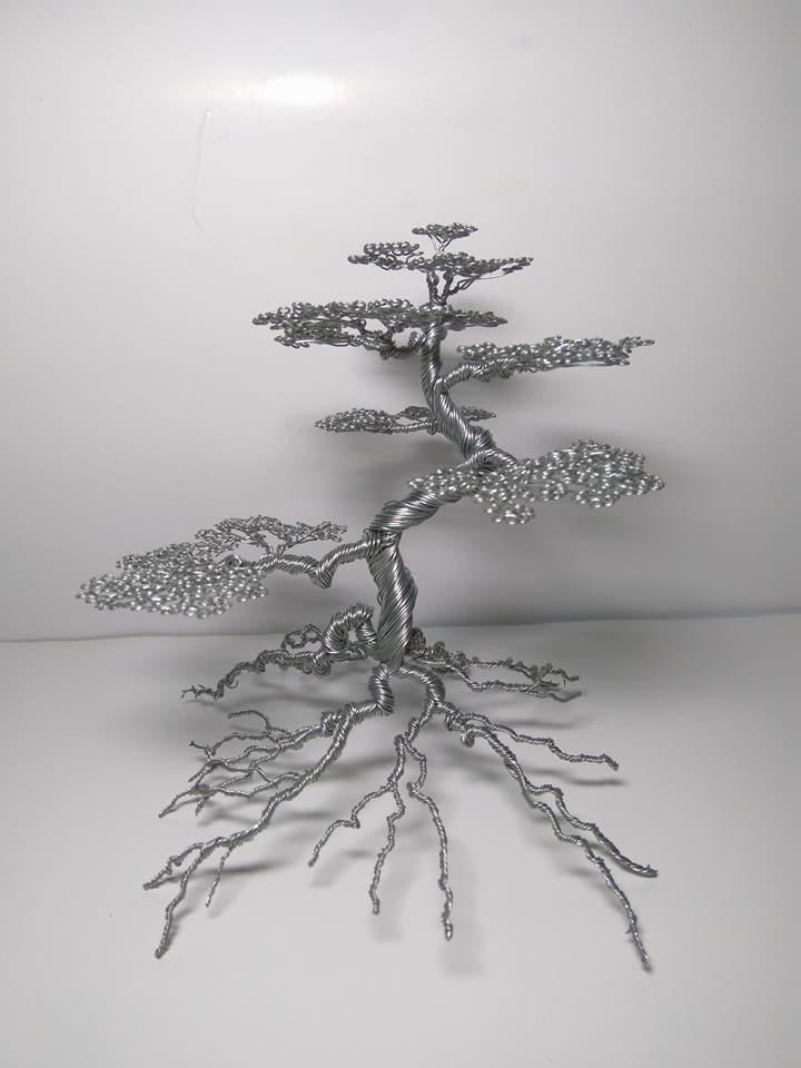 """Nam sinh """"hốt bạc"""" nhờ bán cây bonsai bằng đồng trong dịp Tết - Hình 3"""