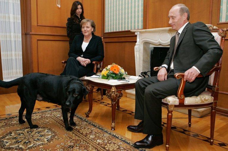 Tiêu điểm - Tiết lộ bí mật thú vị về những chú chó của Tổng thống Nga Putin (Hình 5).