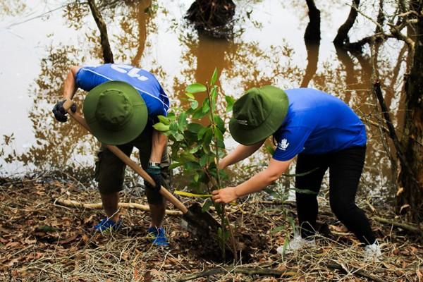 Cuộc sống xanh - Mở rộng khôi phục rừng, đảm bảo sinh kế tại Láng Sen