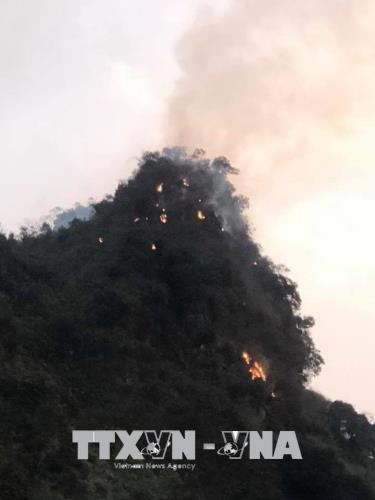 Điểm nóng - Quảng Ninh: Cháy rừng thông tại Đại Yên (Hình 2).