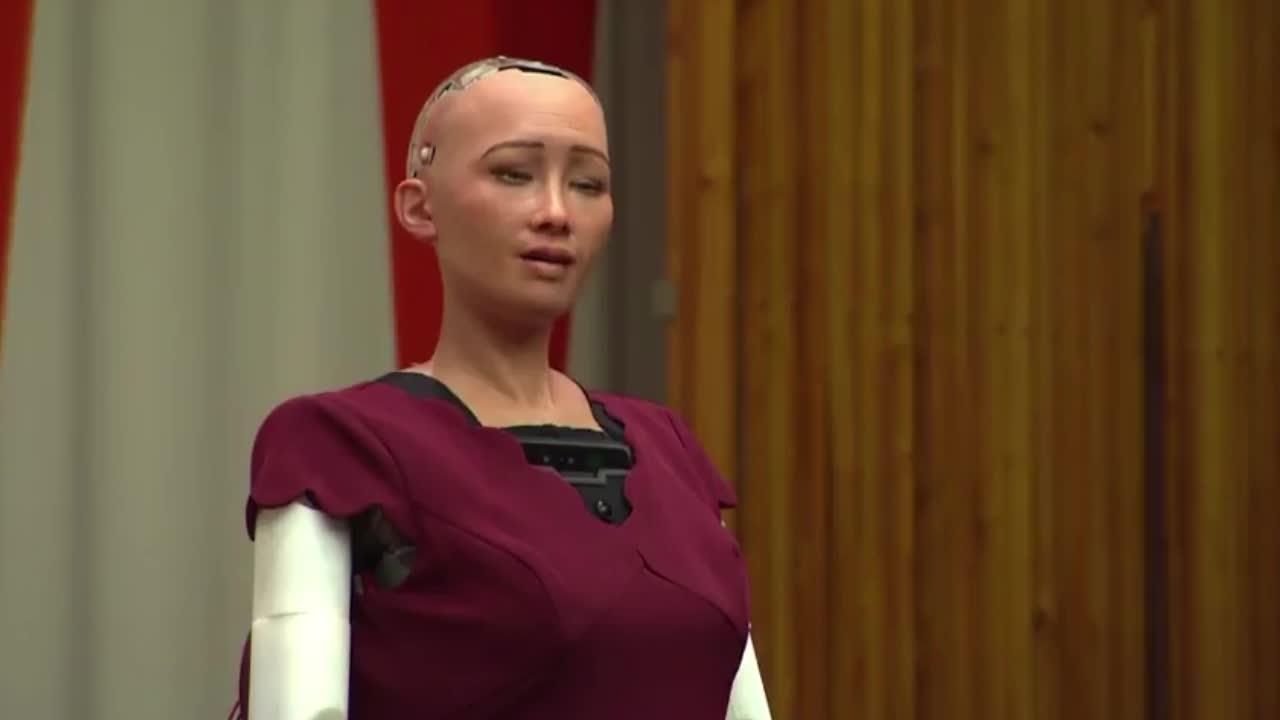 Hồ sơ - Kỳ quái chuyện robot được cấp quyền công dân muốn lập gia đình (Hình 2).