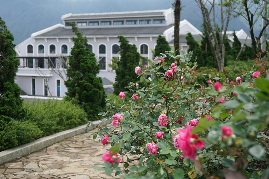 Tiêu dùng & Dư luận - Ngất ngây sắc hồng cổ chân núi Fansipan (Hình 5).