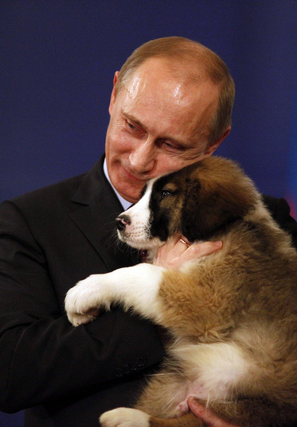 Tiêu điểm - Tiết lộ bí mật thú vị về những chú chó của Tổng thống Nga Putin (Hình 3).