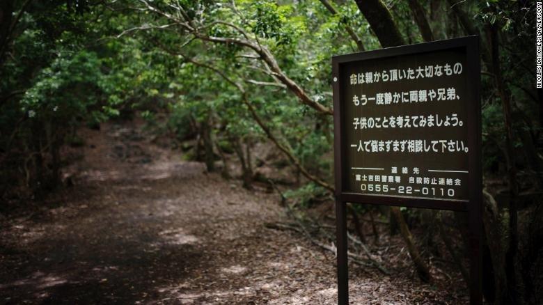 Hồ sơ - Vén màn bí mật 'khu rừng tự sát' ở Nhật Bản (Hình 2).