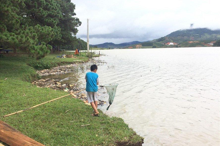 Cuộc sống xanh - Lâm Đồng: Cải tạo hồ cấp nước đang bị ô nhiễm nặng