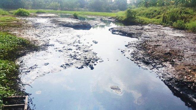 Điểm nóng - Hà Nội: Sông cầu Bây ô nhiễm nghiêm trọng