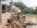Tin nhanh - Bến Tre: Sạt lở cuốn trôi 4 căn nhà dân xuống sông