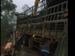 Xã hội - Phản hồi thông tin 'hôi của xe chở lợn bị lật'