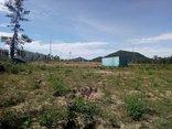 Chính trị - Xã hội - Hà Tĩnh: Cán bộ lừa dân bán đất quý giá bèo để trục lợi
