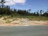 Xã hội - Lừa dân bán 'đất vàng' giá rẻ: Cách chức trưởng phòng TN&MT