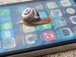 Công nghệ - Làm chậm iPhone cũ, Apple đối mặt hàng loạt kiện tụng