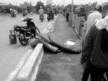 Pháp luật - Hải Phòng: Truy bắt kẻ trộm xe máy của nạn nhân nhảy cầu tự tử