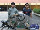 Góc nhìn luật gia - Hai thanh niên trộm 12 con mèo về bán lấy tiền tiêu Tết, bị xử lý thế nào?