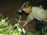 Video - Hà Nội: Chế chai nhựa bắt cua kiếm tiền triệu mỗi tháng [CLIP]