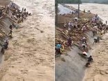 Video - Clip: Nước lũ chảy xiết, người dân vẫn liều mạng lao ra vớt củi