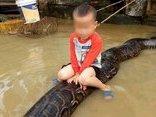 Video - Clip: Bé trai 3 tuổi cưỡi trăn 'khủng' giữa sân ngập nước gây sốc