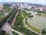 Xã hội - Toàn cảnh gần 1.300 cây xanh ở Hà Nội trước giờ di chuyển, chặt hạ