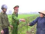 An ninh - Hình sự - Thanh Hóa: Công an vào cuộc điều tra vụ ruộng ớt 4 sào nghi bị kẻ xấu phá hoại