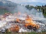 Tin nhanh - Gia Lai: Một năm, phát hiện, tiêu hủy hơn 2 vạn gói thuốc lá lậu
