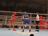 Bình luận - Nguyễn Thị Tâm xuất sắc đoạt HCV boxing nữ vô địch châu Á 2017
