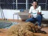 Cộng đồng mạng - Lời trần tình của người đăng clip làm thịt chó Ngao Tây Tạng