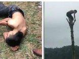 Cộng đồng mạng - Chủ tịch xã nói về việc nam thanh niên gặp nạn khi trèo cây chuối trong lễ hội