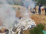 Chính trị - Xã hội - Tiêu hủy hơn 35.500 bao thuốc lá lậu tại Đà Nẵng