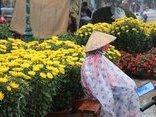 Xã hội - Người bán hoa Tết co rúm trong cơn giá lạnh cuối năm