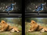 Sản phẩm - Thuật toán mới của Google 'tiếp tay' việc vi phạm bản quyền hình ảnh
