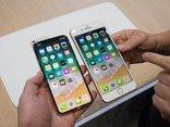 Cuộc sống số - iPhone X thua xa iPhone 8 về doanh số